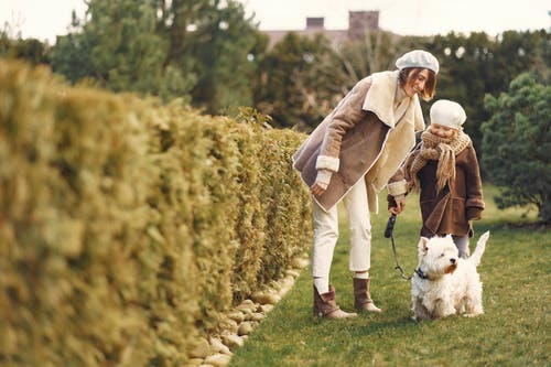 Woman and Little Girl in Brown Coat with their Small Dog on Green Grass Field