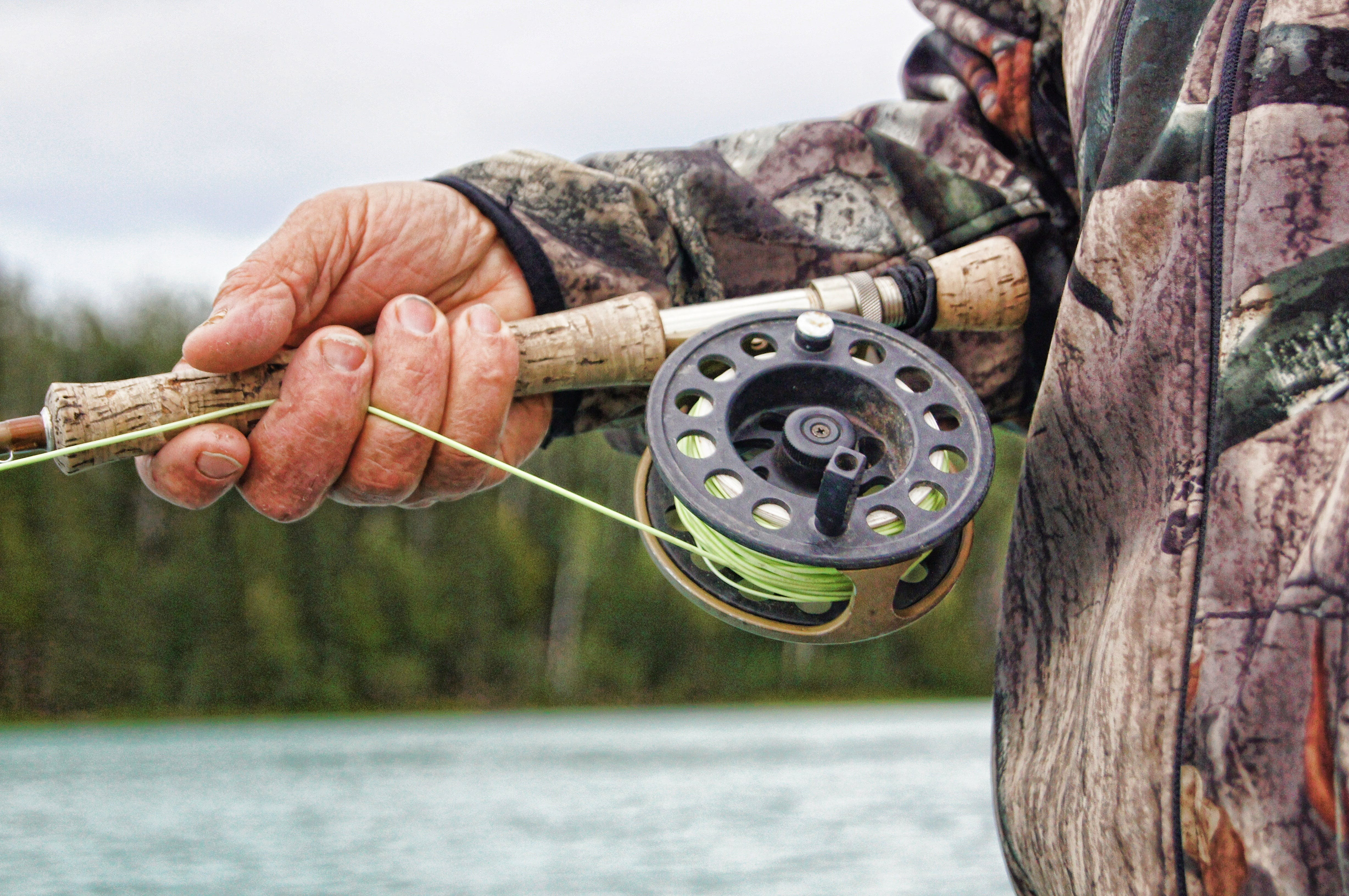 Free stock photo of fishing, man, person, hand