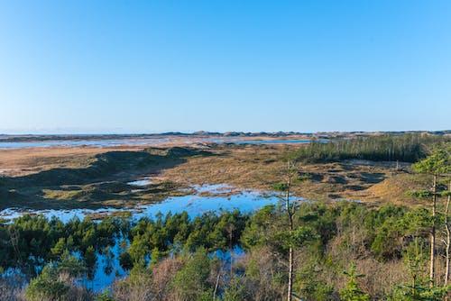 Free stock photo of forest park, lake, nationalpark