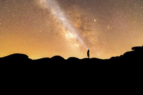 剪影, 天性, 天空, 宇宙 的 免费素材照片