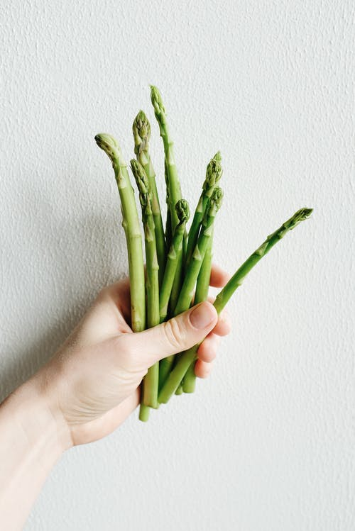 Green Asparagus on Persons Hand