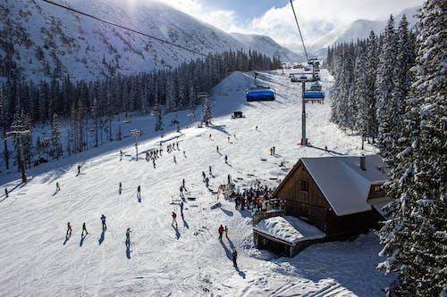 Gratis stockfoto met alpen, avontuur, berg