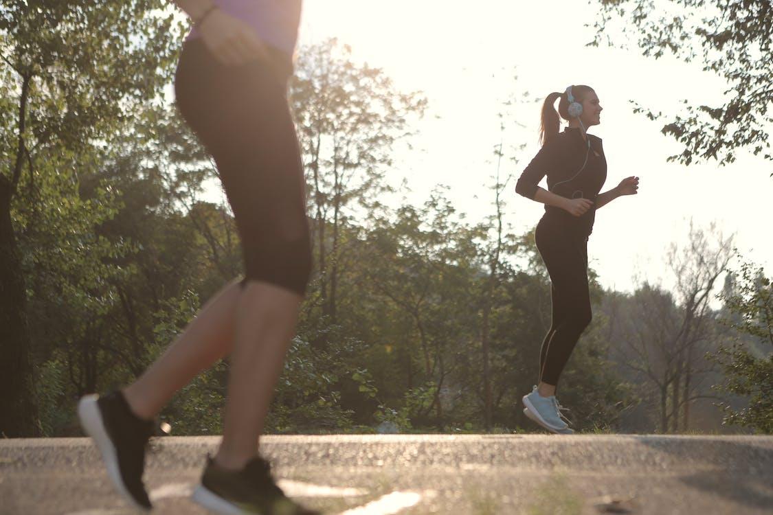 Foto stok gratis alam, badan, berlari
