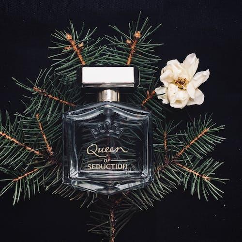 Foto stok gratis aroma, background hitam, botol, botol kaca