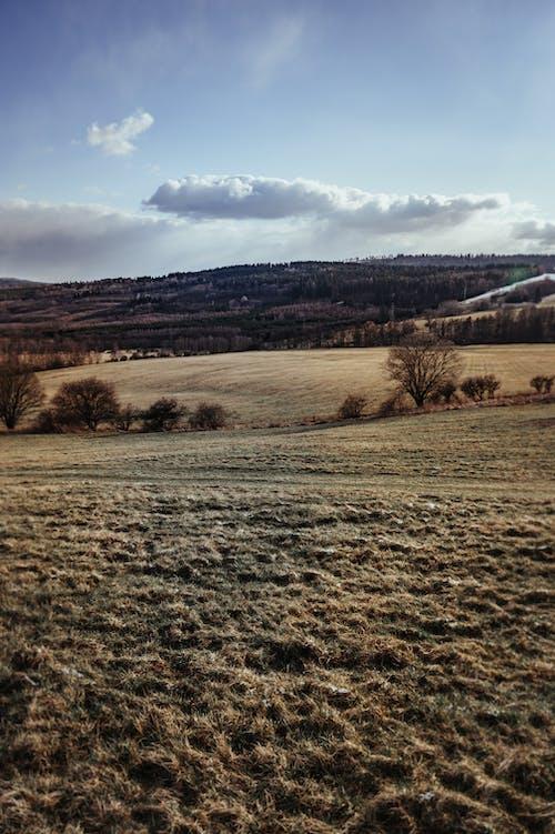 丘陵, 天性, 天空, 性質 的 免费素材图片