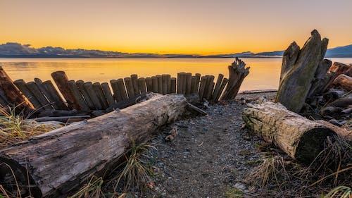 Photos gratuites de aube, barrière, bois, bois de charpente