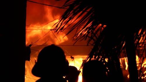 www.trendstechnews.com 的 免费素材图片
