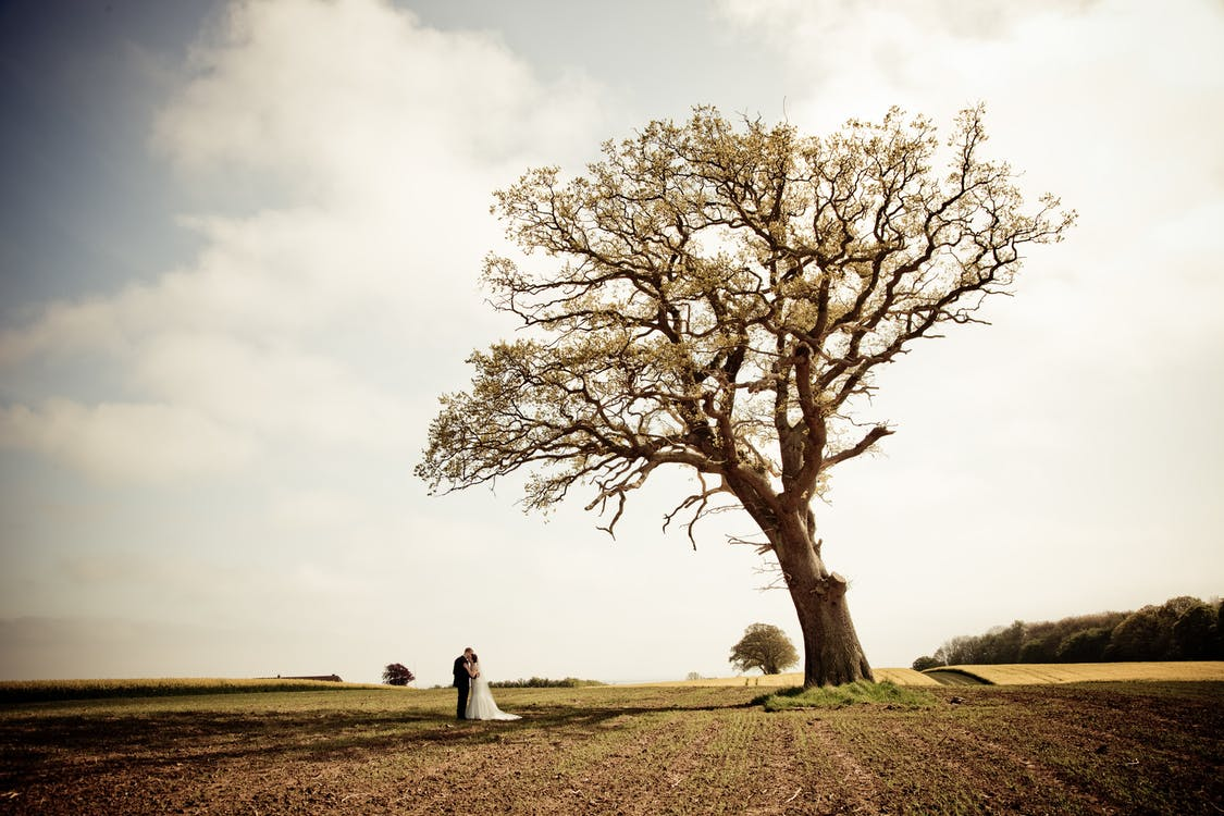 Man and Woman Standing on Brown Field Near Green Tree Under White Clouds