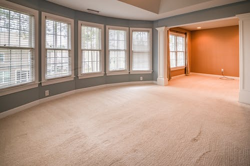 Living Room with Plenty Windows and Carpeted Floor