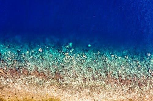 Fotobanka sbezplatnými fotkami na tému breh, dron, Indonézia