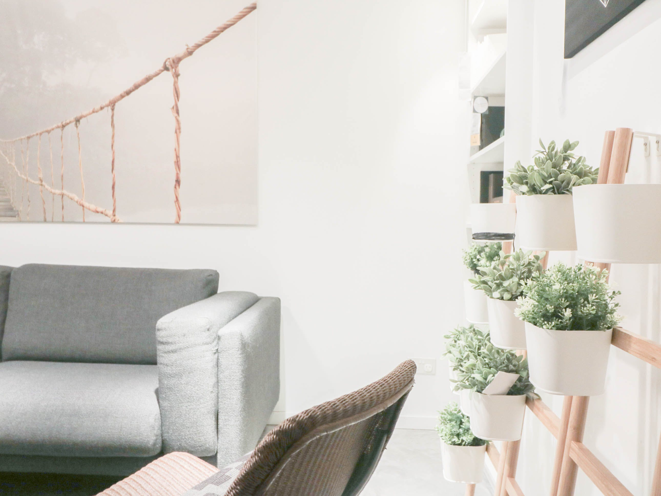 Free stock photo of plants, home, interior, scandinavia