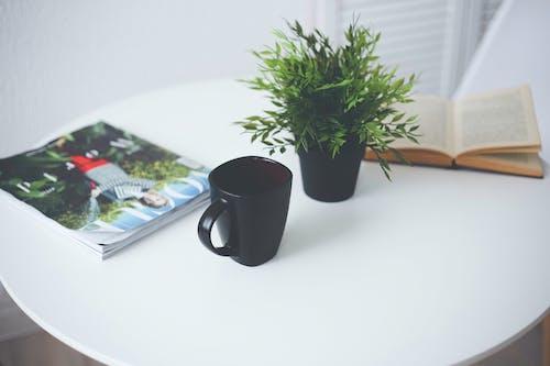 Free stock photo of afternoon tea, artificial grass, book, coffee mug