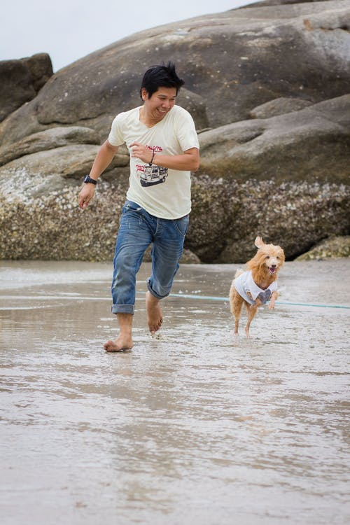 Man in White Crew Neck T-shirt and Blue Denim Jeans Running on Beach with His Pet Dog