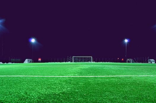 Free stock photo of lights, night, field, grass