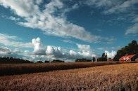 sky, clouds, field
