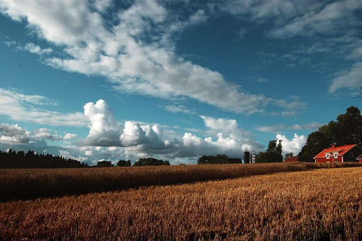Free stock photo of sky, clouds, field, countryside