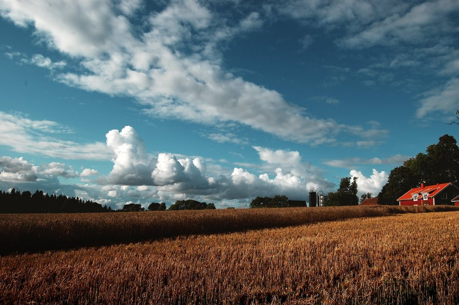 New free stock photo of sky, clouds, field