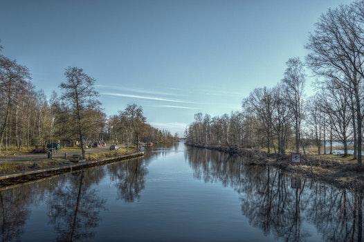 Free stock photo of landscape, nature, forest, bridge