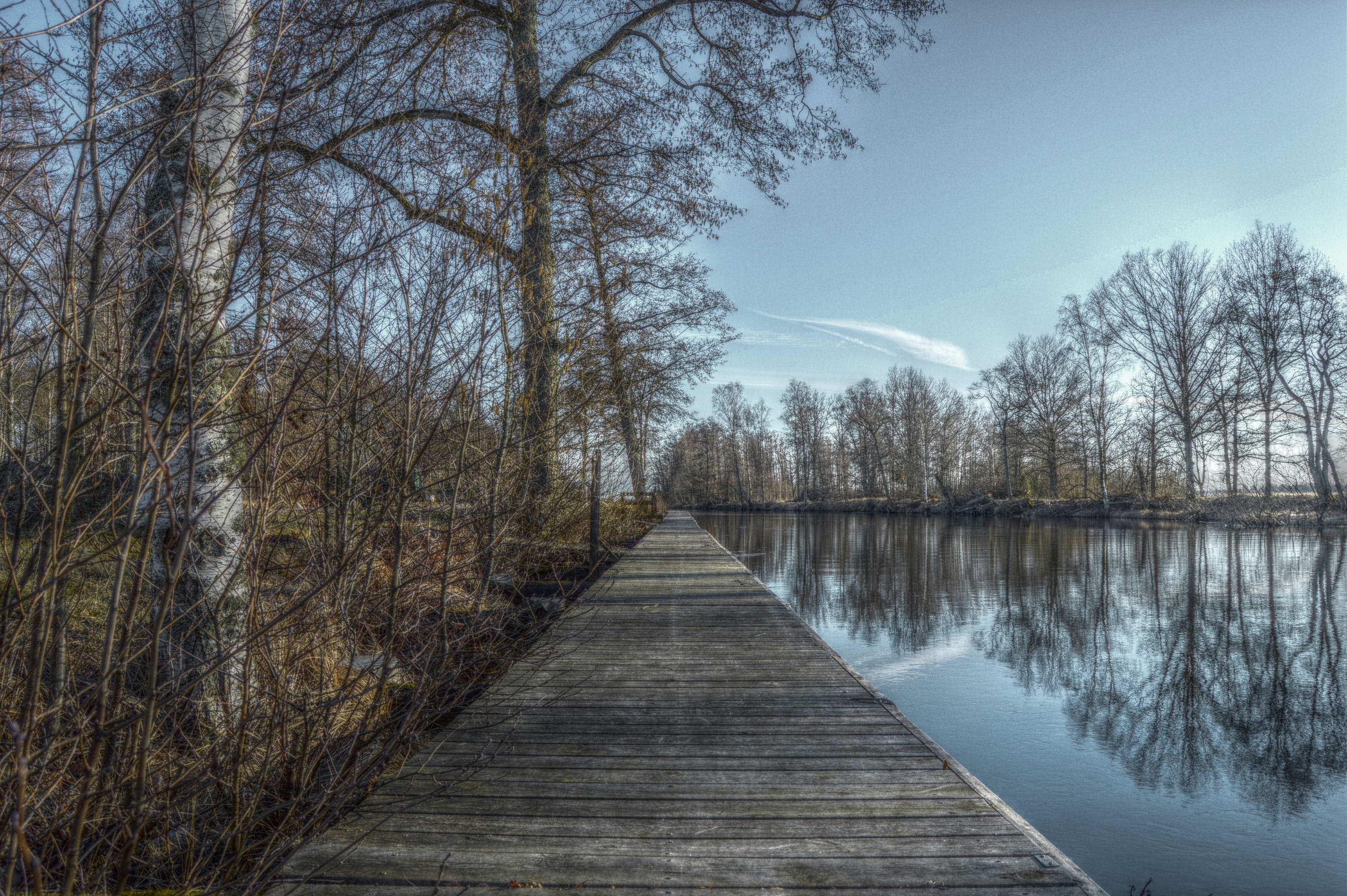 Free stock photo of bridge, forest, hdr, lake
