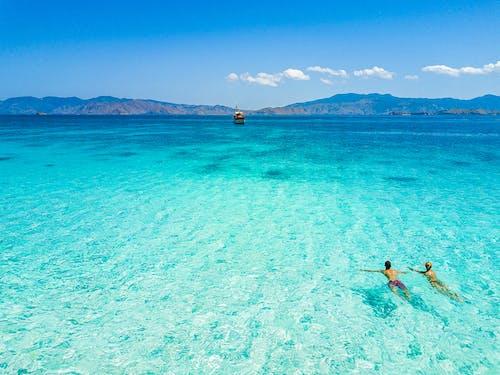 Foto stok gratis air, bagus, berenang