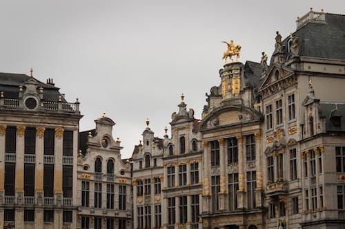 Darmowe zdjęcie z galerii z barok, belgia, bruksela, budynki