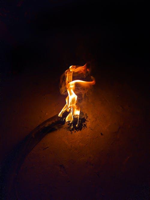 Free stock photo of bonfire, camp fire, campfire