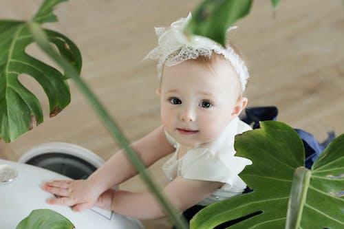 女兒, 女孩, 室內, 寶寶 的 免費圖庫相片