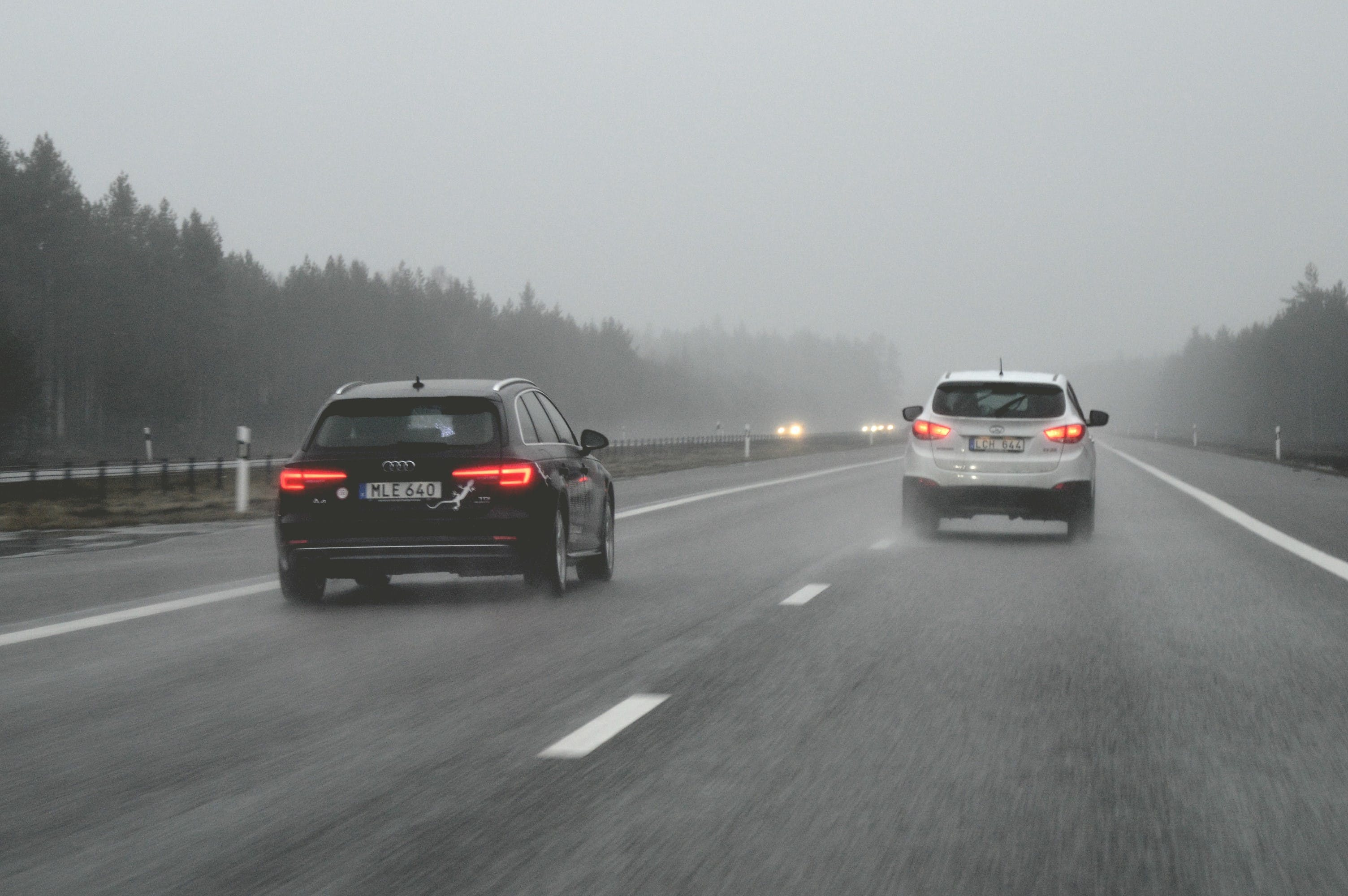 Free stock photo of cars, fog, forest, highway
