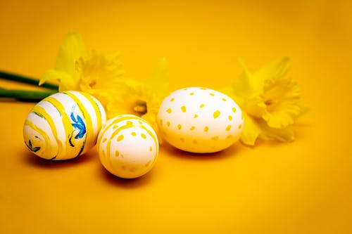 Easter Eggs Beside Yellow Flowers