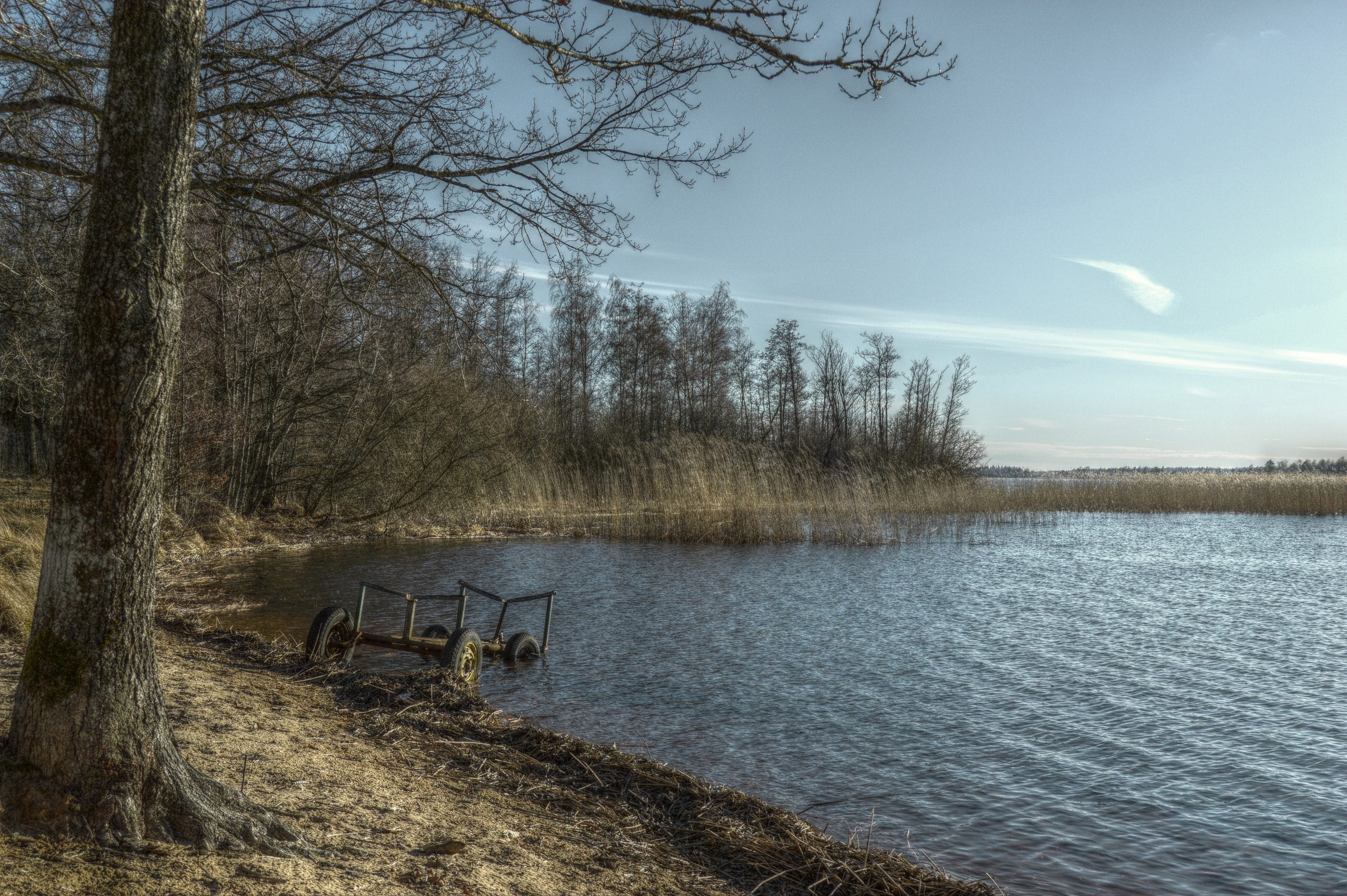 Free stock photo of forest, hdr, lake, landscape