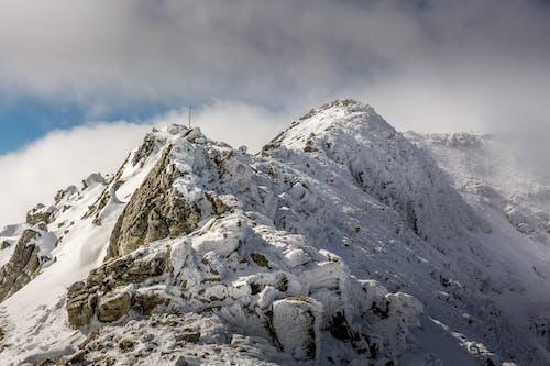 Imagine de stoc gratuită din alpin, altitudine, balcani, Bulgaria