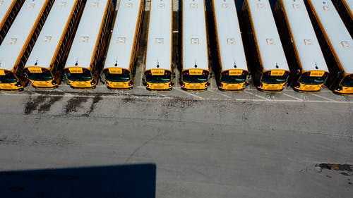 Parked Yellow Buses