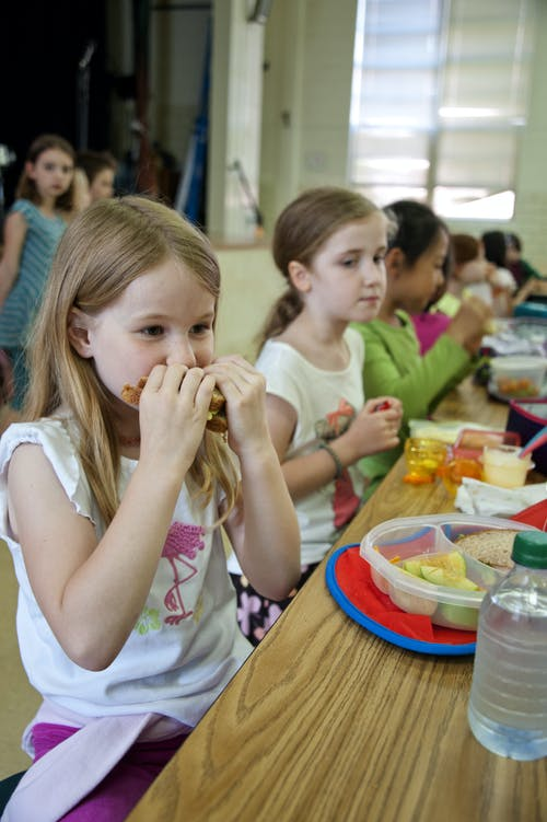 Free stock photo of cafeteria, kids, lunch, student
