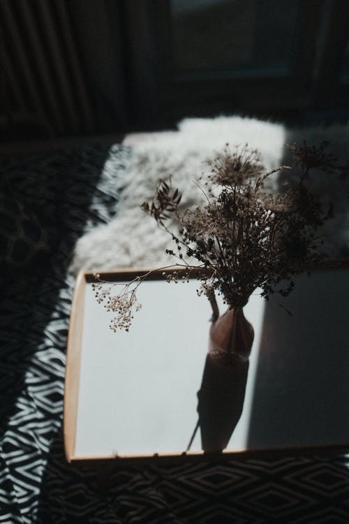 Plant In A Vase On A Tray