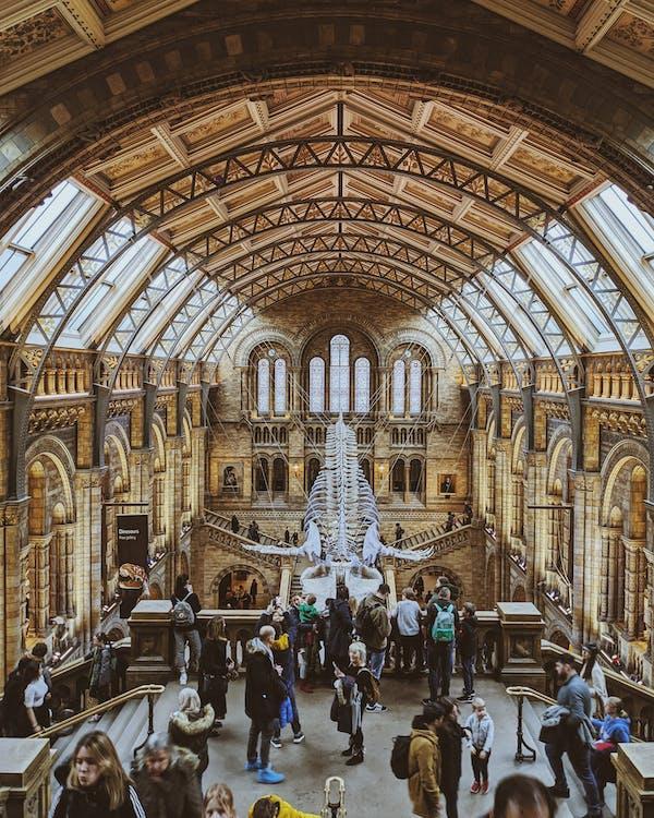 人, 倫敦, 博物館 的 免费素材图片