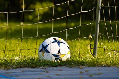Fotos de stock gratuitas de balón de fútbol, bola, césped