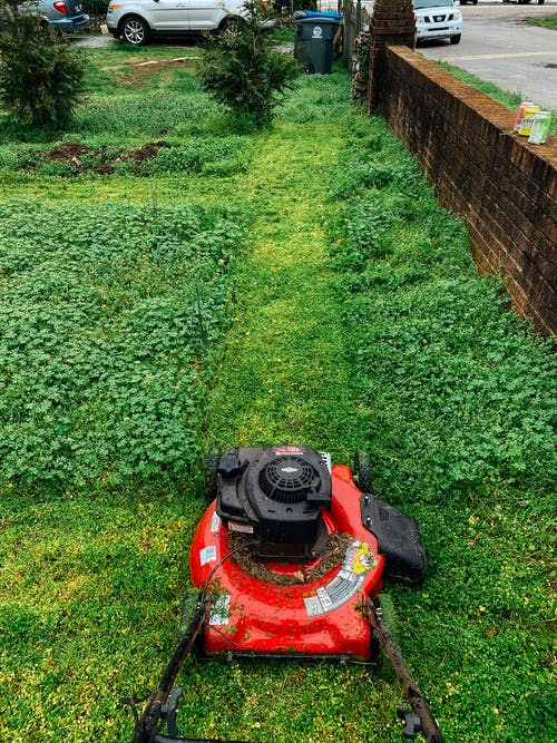 Red And Black Lawn Mower On Green Grass