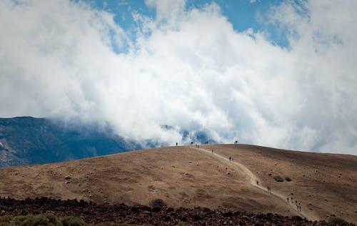 Foto profissional grátis de alto, ao ar livre, aventura