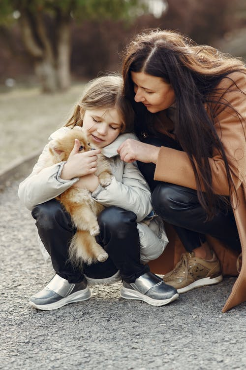 From above of cheerful young woman and little girl wearing warm wear squatting together and embracing fluffy Pomeranian dog while resting in nature