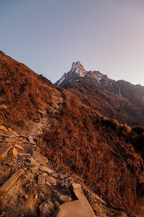 喜馬拉雅山, 天性, 山 的 免費圖庫相片