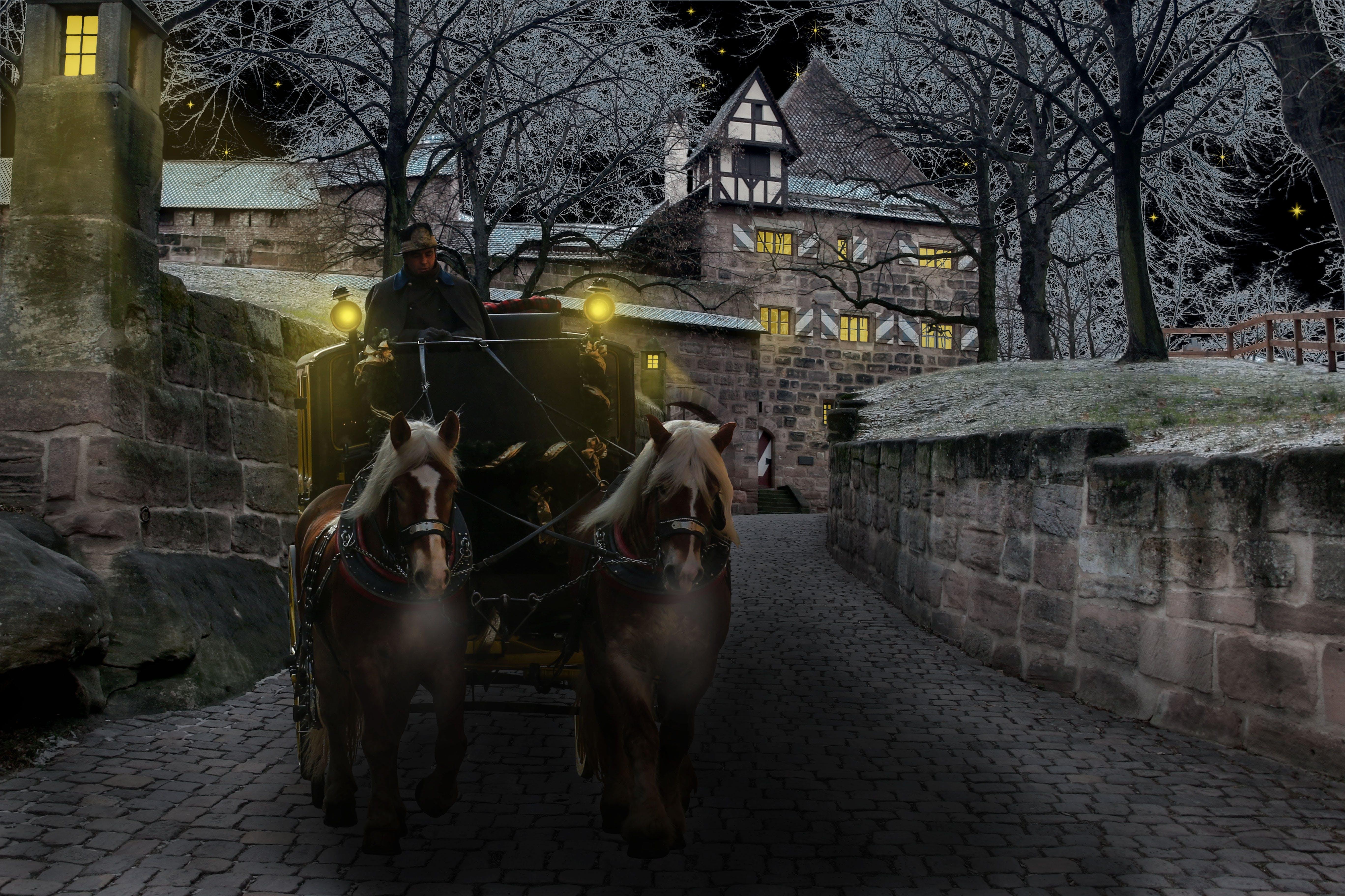 carriage, castle, coach