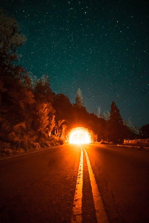 คลังภาพถ่ายฟรี ของ กลางคืน, การถ่ายภาพกลางคืน, ดวงดาว, ดารา