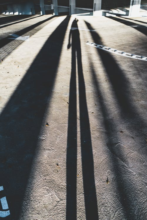Shadow of person on pathway