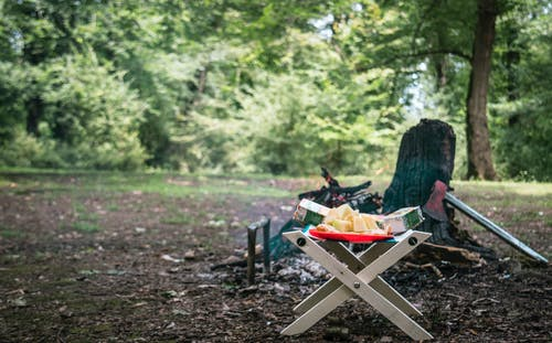 Portable table with bright tray with delicious ripe pineapple cubes on picnic near black burnt firewood with sharp ax on shabby terrain surrounded by green trees in daylight