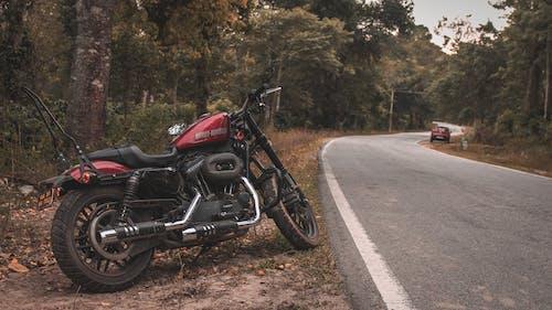 Ilmainen kuvapankkikuva tunnisteilla asfalttitie, harley davidson, harley davidson roadster, moottoripyörä
