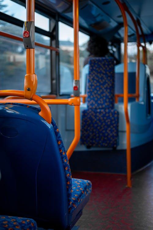 Fotos de stock gratuitas de asientos, autobús, bus, sistema de transporte