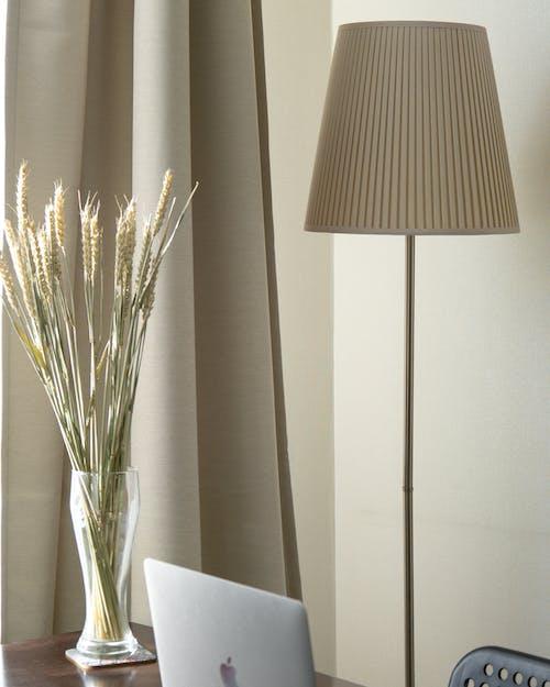 White Floor Lamp Beside A Plant