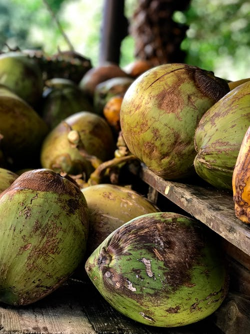 Ảnh lưu trữ miễn phí về coconus, khỏe mạnh, món ăn, nhiệt đới