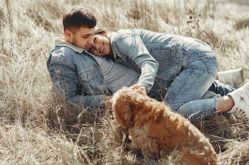 Photos gratuites de adorable, affection, américain, ami
