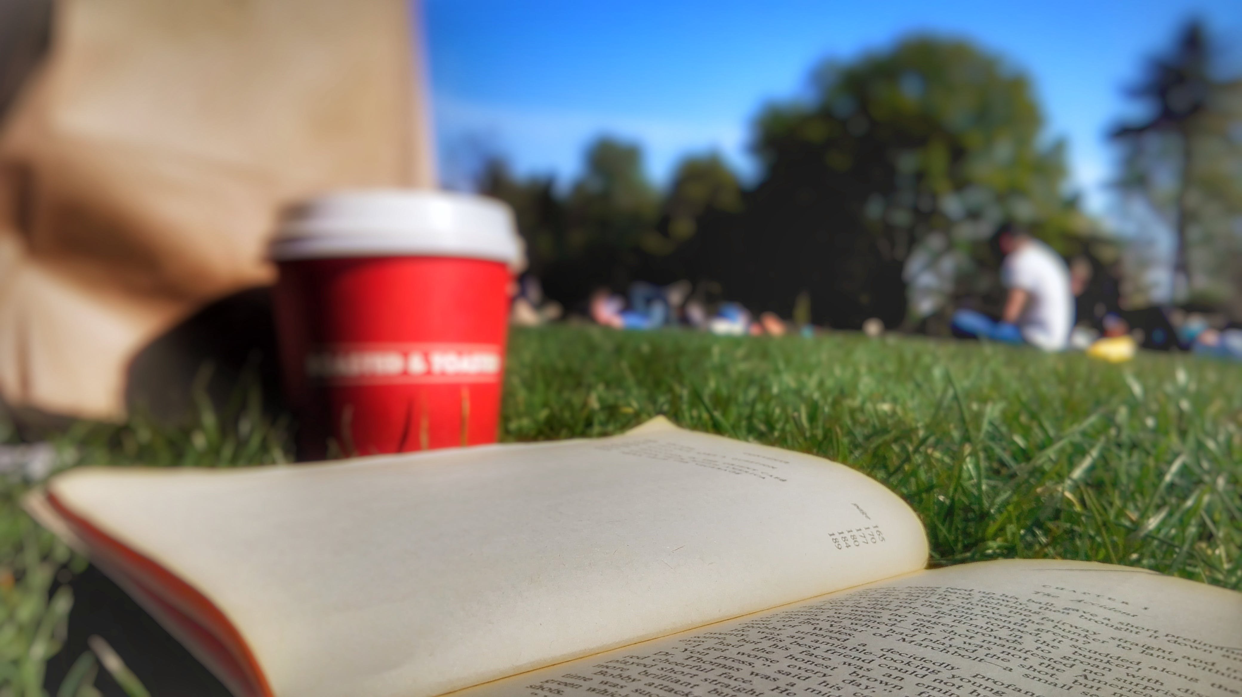 Free stock photo of book, city park